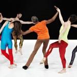 Saison 2015-2016 – Opéra National de Paris : abonnez-vous avec Danse en Seine !